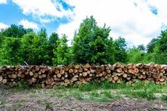 Pilha de madeira 3 Fotografia de Stock Royalty Free