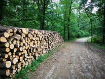 Pilha de madeira com um trajeto fotos de stock