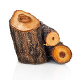 Pilha de madeira cortada do fogo de registros da árvore Imagens de Stock