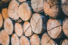 Pilha de madeira da árvore de logs de madeira naturais imagem de stock royalty free