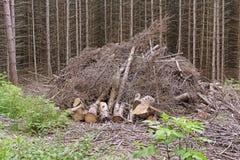 Pilha de madeira pronta para queimar-se Imagem de Stock Royalty Free