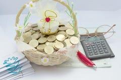 Pilha de moedas de ouro na cesta com pena vermelha Fotos de Stock