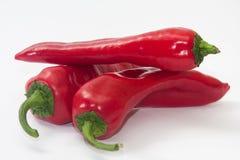 Pilha de paprika vermelhas no fundo branco Imagem de Stock Royalty Free