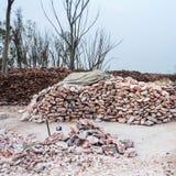 Pilha de pedaços crus de sal de rocha Imagem de Stock