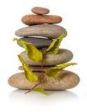 Pilha de pedras do zen com folhas secadas Imagem de Stock