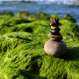 Pilha de pedras, equilíbrio do seixo na praia Imagem de Stock