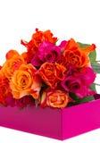 Pilha de rosas alaranjadas e cor-de-rosa frescas Imagens de Stock