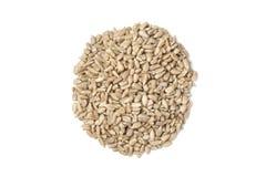 Pilha de sementes de girassol Imagem de Stock