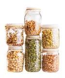 Pilha de sementes emergentes diferentes que crescem em um frasco de vidro Imagem de Stock