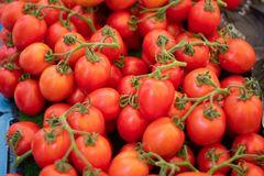 Pilha de tomates frescos da uva imagens de stock royalty free