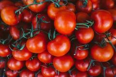 Pilha de tomates vermelhos brilhantes com as videiras verdes no mercado dos fazendeiros Foto de Stock Royalty Free