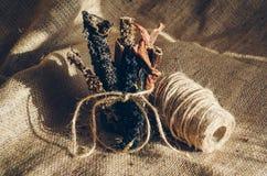 Pilha de varas feitas malha triplicar-se da carne Está próximo uma bobina da guita grosseira a ligar Deleites para c?es As varas  foto de stock