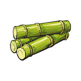 Pilha do cana-de-açúcar verde cru fresco ilustração do vetor