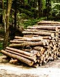Pilha do feixe de madeira fotografia de stock royalty free