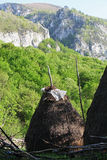 Pilha do feno na mola em montanhas de Cerna Imagem de Stock Royalty Free