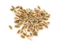 Pilha do fim extremal das sementes de aneto acima fotografia de stock royalty free
