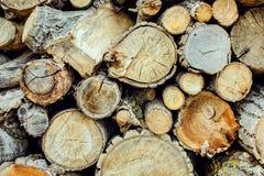 Pilha do fundo de madeira natural dos logs fotografia de stock royalty free