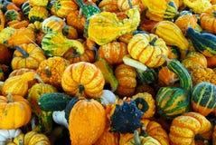 Pilha do Gourd foto de stock royalty free