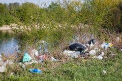 Pilha do lixo despejada nos arbustos Fotos de Stock