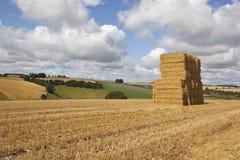Pilha do pacote da colheita Fotos de Stock