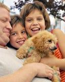 Pilha do Pessoa-Filhote de cachorro Fotos de Stock