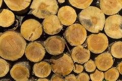 A pilha do tamanho diferente desbastou os logs de madeira preparados para o inverno fotos de stock