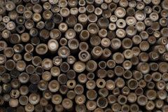 Pilha dos bambus vistos da extremidade cortada imagens de stock