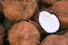 Pilha dos cocos Fotos de Stock