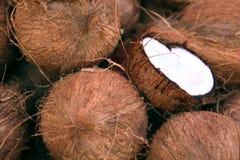 Pilha dos cocos Foto de Stock Royalty Free