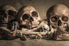 Pilha dos crânios e dos ossos no pano de saco Fotografia de Stock