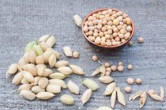 Pilha dos grãos-de-bico Foto de Stock Royalty Free