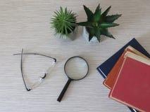 Pilha dos livros, um par de vidros, lupa, lente de aumento e flores fotos de stock