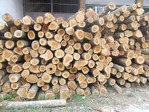 Pilha dos logs 2 de madeira Foto de Stock