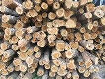 Pilha dos logs 2 de madeira Fotos de Stock