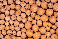 Pilha dos logs de madeira para o fundo Fotos de Stock Royalty Free