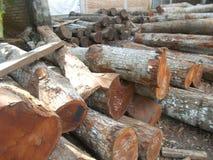 Pilha dos logs 3e de madeira Imagem de Stock