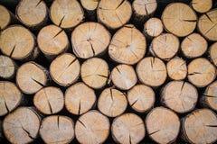 Pilha dos logs vistos no seção transversal Foto de Stock