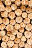 Pilha dos registros de madeira Foto de Stock