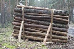 Pilha dos registros de madeira Imagens de Stock Royalty Free