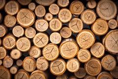 Pilha dos registros de madeira prontos para o inverno Foto de Stock Royalty Free