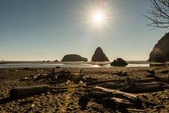 Pilha dos troncos e das ilhotas no fundo que estão para fora no Oceano Pacífico em uma praia em Oregon do sul, EUA imagem de stock