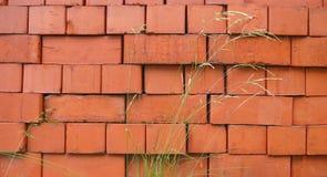 Pilha e carriço dos tijolos vermelhos Imagens de Stock