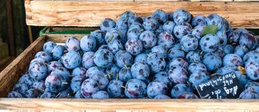 Pilha madura azul das ameixas na venda em uma caixa grande de madeira imagem de stock royalty free