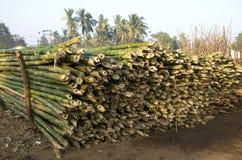 Pilha material do tronco de bambu para construir em Ásia, Índia Foto de Stock