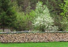 Pilha ou pilha de madeiras do fogo Fotos de Stock Royalty Free
