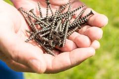A pilha pequena dos parafusos equipa dentro a mão Imagens de Stock Royalty Free
