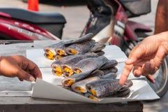 Pilha seca de compra dos peixes do gurami no papel Fotografia de Stock