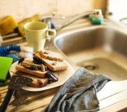 Pilha suja dos pratos sujos infestados com as baratas, conceito da cozinha do estilo de vida foto de stock