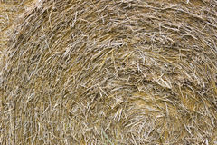 Pilha torcida textura Foto de Stock Royalty Free
