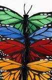 Pilha vertical da borboleta fotografia de stock royalty free